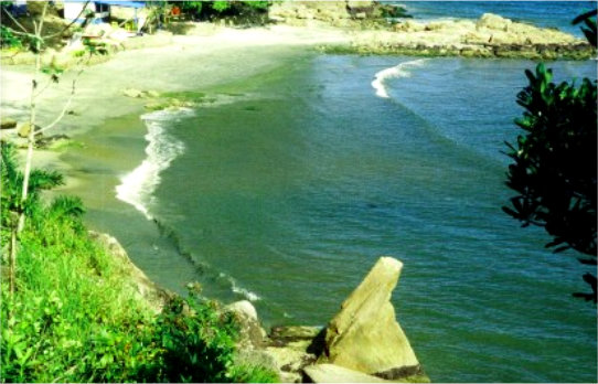 Vista do alto da escada da Praia da Pedra da Freira - Praias de Caraguatatuba
